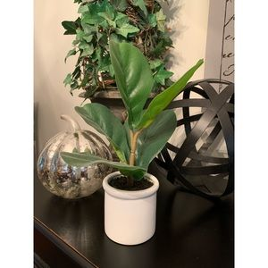 Small Faux Fiddle Leaf Fig Plant